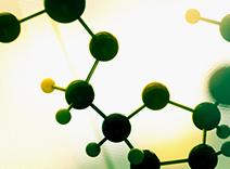 Calcium and Amino Acids